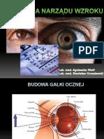 Agnieszka Wsół Fizjologia oka