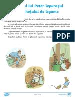 Misterul lui Peter Iepurasul si al hotului de legume - Fisa de activitate.pdf