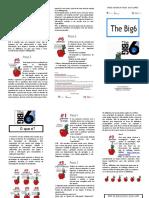 Folheto BIG6 RBEMS