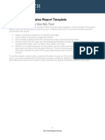 it-Level-3-Project-Status-Report-Template.docx