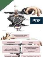 AULA 1 - INTRODUÇÃO A GENÉTICA.pptx