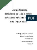 Cercetari de marketing online