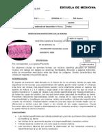 Zumaeta Barboza Mario Rony_Practica N°1 JUEVES.docx