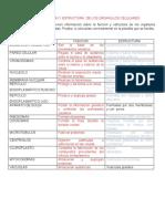 TALLER 1 - FUNCION Y ESTRUCTURA  DE LOS ORGANULOS CELULARES (1).doc