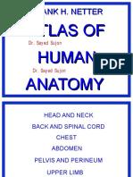 Netter - Atlas of Human Anatomy