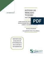 Estudio Mercado TURISMO Calakmul