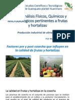 2.2, 2.3, 2.4 frutas y hortalizas.pdf