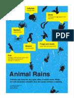 Week #29 – Animal Rains