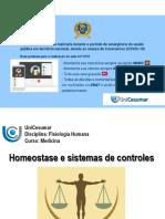 Homeostase.pdf