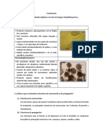 fito.pdf
