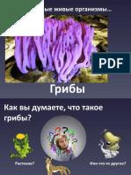 Грибы.pptx