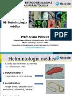 Helmitologia pdf aula.pdf