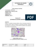 1. EXTENDIDA (1).pdf