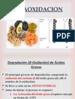 III_betaoxidacion_y_cpos._cetonicos.ppt