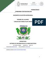 portafolio evidencias_sistemas de informacion de la mercadotecnia_Felipe hiram Concepcion Torres