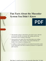 muscle fun facts