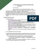 Tema-3-TEL-y-sus-alteraciones-en-los-diversos-niveles-del-lenguaje