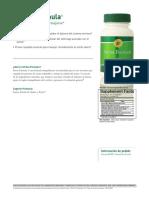stress-formula.pdf