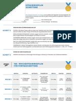 Training-Plan_10k-Advanced_DE.pdf