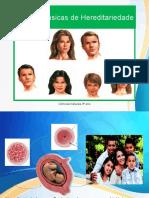 9º Ano - Hereditariedade (Completo).pptx