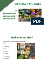 Ciencias naturales Clasificación de los seres vivos