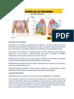 RESUMEN RANDY CA DE PULMON.docx