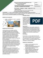 2. ARTÍSTICA TERCER PERIODO.pdf