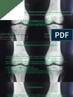 226750128-Rotaru-Claudiu-Kinetoprofilaxia-gonartroza
