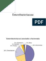 Enterobacteriaceae 1