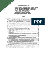 Reorganizacion Curricular Ciclos.pdf