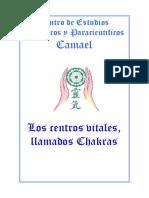Centrosvitalesllamadoschacras.pdf