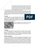 Lab4b. Descripcion Sistematica de min en SD.doc