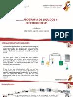 Cromatografia hplc y electroforesis