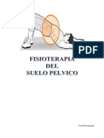 TEMAS DE FISIOTERAPIA EN SUELO PELVICO.output