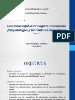 Fisiopatología de la Leucemia linfoblástica aguda