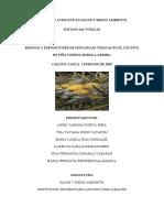 PROPUESTA DE INTERVENCION SIEMBRO DE PIÑA (1) (1)
