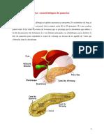 Les  caractéristiques du pancréas