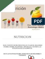conceptos basicos nutricion