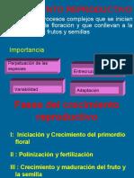 FOTOPERIODO Y VERNALIZACIÓN (1).ppt