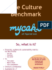 Culture Benchmark overview