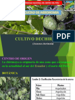 Cultivo chirimoya_compressed