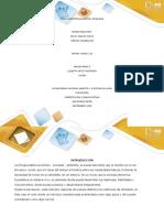 Anexo 3-Informe de Resultados_Fase 1 (1)