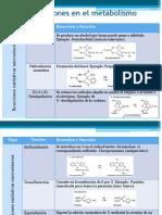 Metabolismodefrmacos 130330215125 Phpapp01 (1)