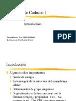 Hidratos Carbono1