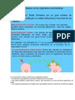 12-ORGANISMOS PLURICELULARES