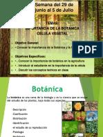 Importancia de la Botanica y Celula