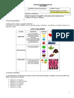 Guía 5_ A. VISUALES 3°