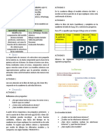 plan10Bhor.docx