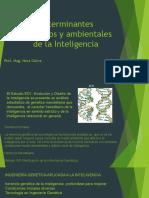 PPT 2 – Determinantes Genéticos y ambientales de la Inteligencia.pdf
