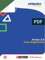 Anexo 3.b -  Fase Diagnóstico (1)